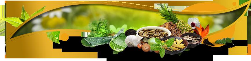Tips cara mengobati penyakit dengan herbal